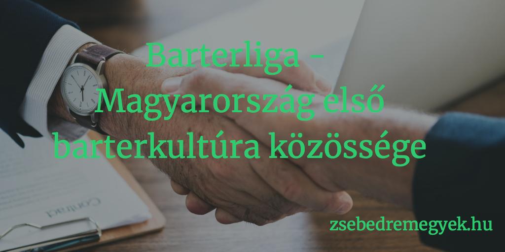 Ez a barter még alakul... - Barterliga, Magyarország első barterkultúra közössége
