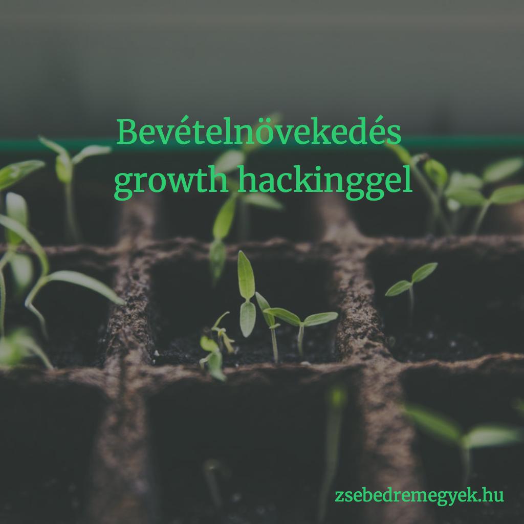 Bevételnövekedés growth hackinggel - ha ez a technika kicsiszolódik, megváltoztatja a markeringet. És a pénzügyet.