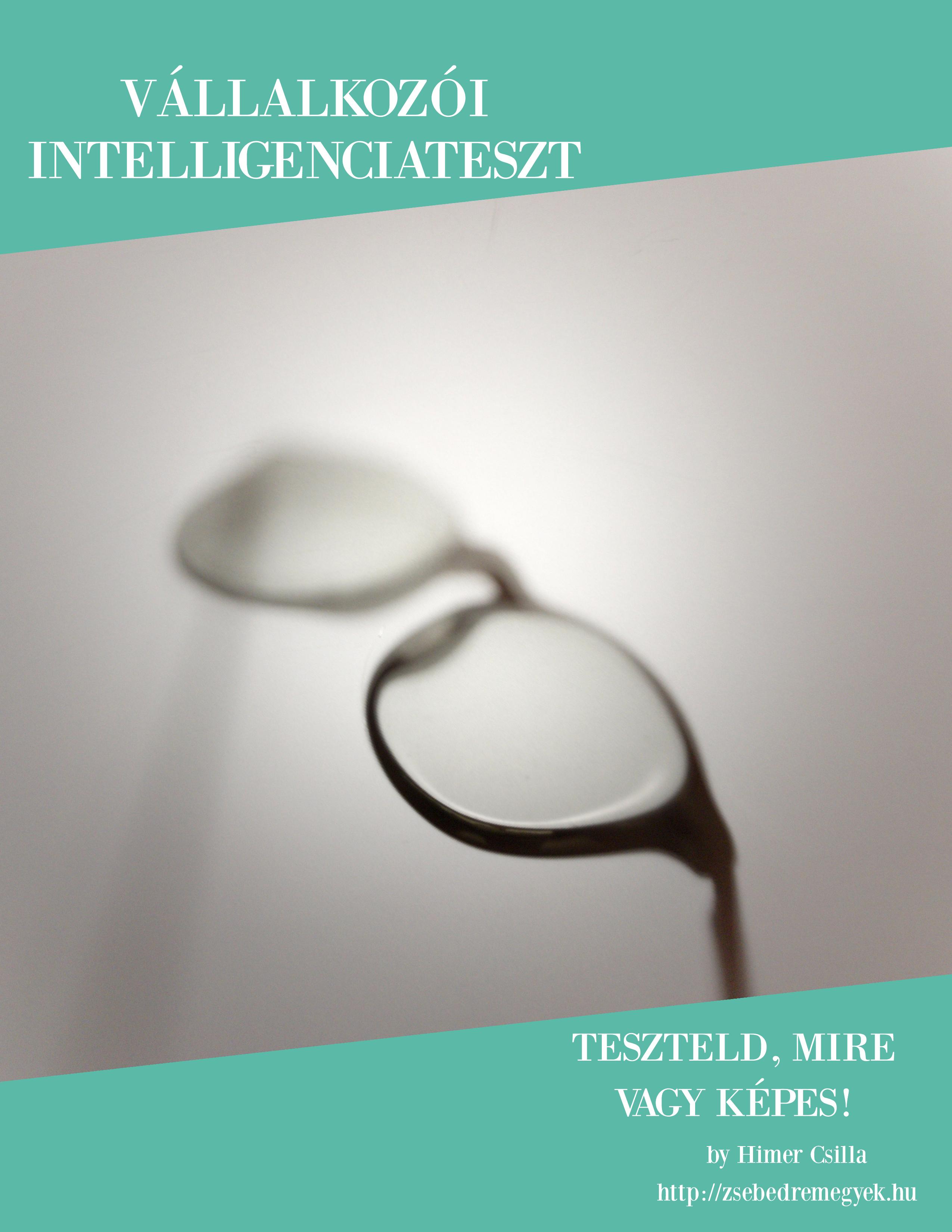 Vállalkozói intelligenciateszt a Tudástár oldalán a Zsebedremegyek.hu kínálatában