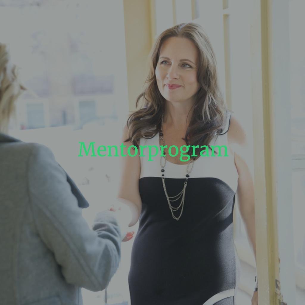 A mentorprogram legalább fél éves sorozattanácsadás és folyamatkísérés