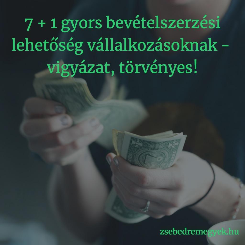 931a609db2 7 + 1 gyors bevételszerzési lehetőség vállalkozóknak