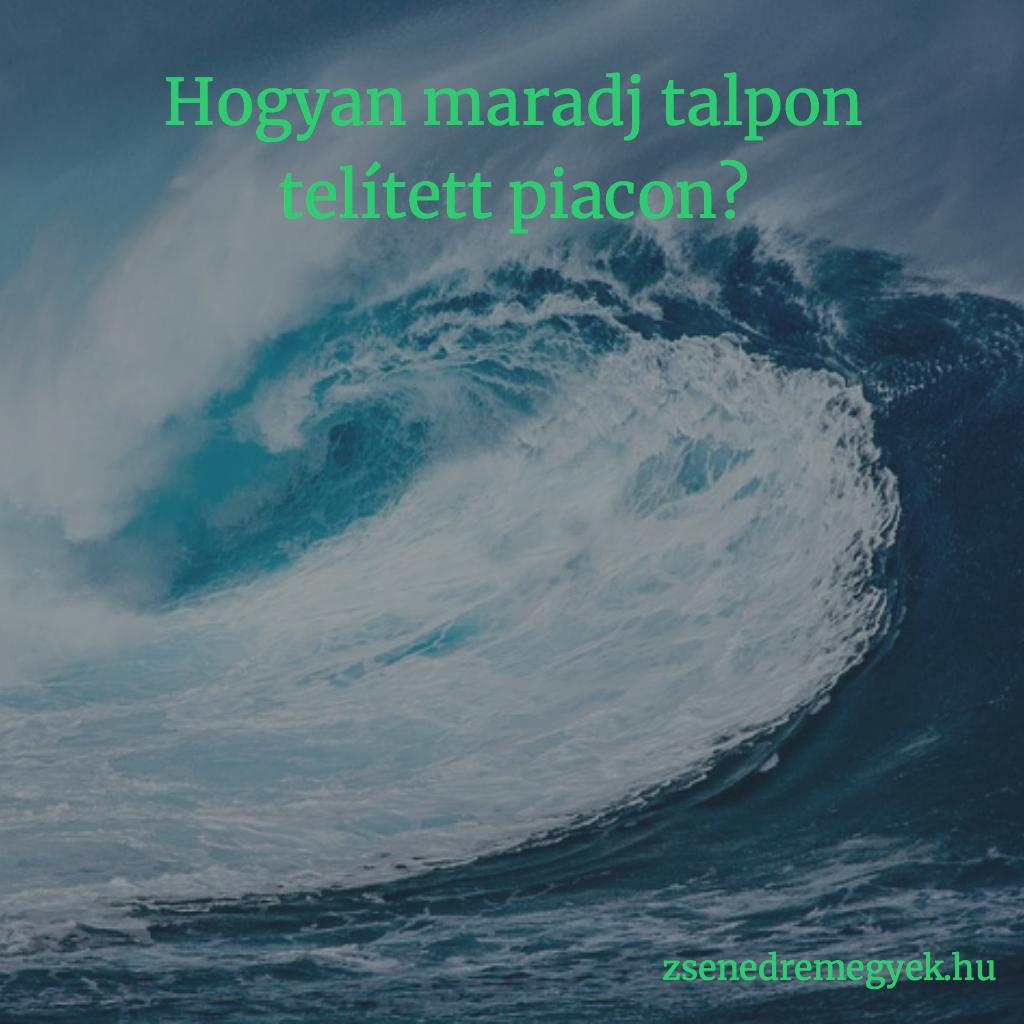 Telített piac - kék óceán stratégia